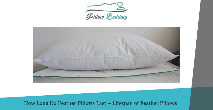 How Long Do Feather Pillows Last – Lifespan of Feather Pillows